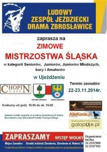 plakat Mistrzostwa Śląska ujeżdżenie